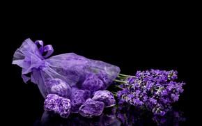 Картинка фиолетовый, лаванда, соль