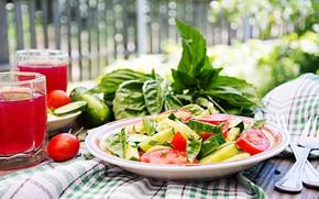 Картинка овощи, помидоры, огурцы, салат, базилик