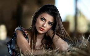 Картинка взгляд, девушка, макияж, брюнетка, сено, jessica napolitano