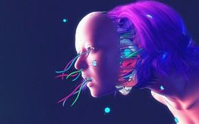Картинка Цвет, Девушка, Робот, Провода, Стиль, Лицо, Girl, Меха, Fantasy, Robot, Style, Color, Skull, Фантастика, Fiction, …