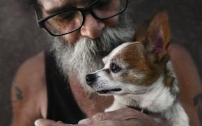 Обои друг, человек, собака