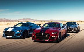 Картинка скорость, Mustang, Ford, Shelby, GT500, 2019