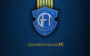 Картинка wallpaper, sport, logo, football, Gostaresh Foulad