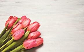 Картинка цветы, букет, тюльпаны, розовые, fresh, pink, flowers, beautiful, romantic, tulips, spring