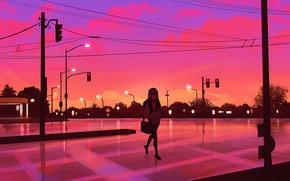Картинка девушка, закат, улица, вечер