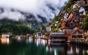 Картинка лес, озеро, дома, Austria, Австрии, Richard Beresford Harris