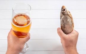 Картинка стол, бокал, пиво, рыба, руки, закусь