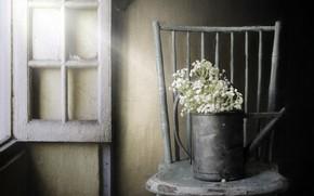 Картинка цветы, окно, стул