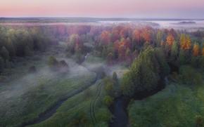 Картинка осень, пейзаж, природа, туман, утро, леса, реки, Владимир Рябков, Узола, Серга