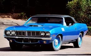 Картинка Blue, Barracuda, Plymouth, Convertible, Vehicle, Plymouth Barracuda, Hemi Cuda, Pony Car