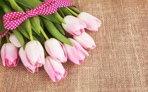 Картинка букет, лента, тюльпаны, розовые, мешковина