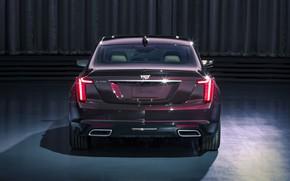 Картинка Cadillac, вид сзади, 2020, Premium Luxury, CT5
