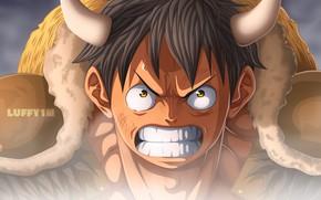 Картинка злость, рога, парень, One Piece, Monkey D. Luffy