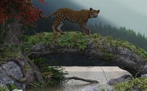 Картинка природа, озеро, леопард