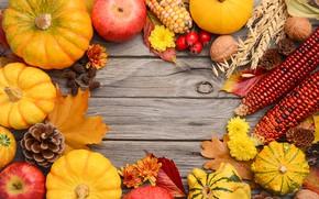 Картинка осень, листья, фон, colorful, урожай, тыква, клен, wood, autumn, leaves, pumpkin, harvest, maple