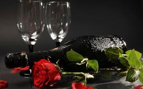 Картинка бутылка, фон, красная, лежат, цветок, листья, боке, роза, лепестки, настроение, бокалы, мокрые, шампанское, капли