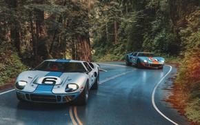 Картинка дорога, лес, транспорт, автомобиль, 1966 Ford GT40 MkII