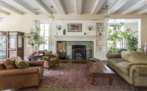 Картинка интерьер, камин, гостиная, Philadelphia home