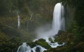 Картинка лес, камни, мох, водопады, Columbia River Gorge, Washington State, Ущелье реки Колумбия, Штат Вашингтон, Tribulation …