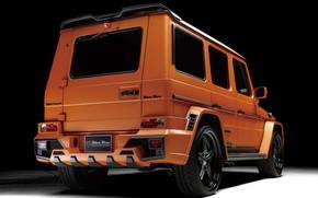 Картинка Mercedes - Benz, W463, Black Bison Edition