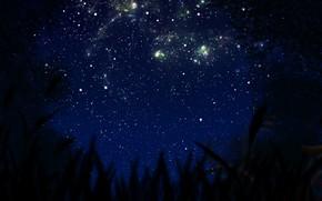 Картинка небо, ночь, природа