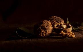 Картинка листья, свет, темный фон, стол, ткань, ядро, орехи, натюрморт, скорлупа, грецкие, грецкие орехи