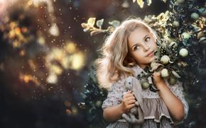 Картинка взгляд, ветки, лицо, фон, настроение, яблоки, игрушка, портрет, кролик, девочка, яблоня