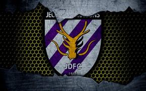 Картинка wallpaper, sport, logo, football, Jeonnam Dragons
