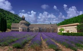 Картинка поле, небо, солнце, облака, деревья, горы, Франция, монастырь, лаванда, аббатство, Senanque Abbey, Сенанк