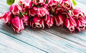 Картинка цветы, букет, тюльпаны, wood, pink, flowers, tulips, spring