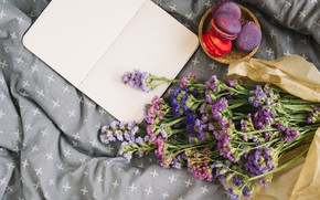 Картинка цветы, покрывало, flowers, пирожные, purple, macaroon, french, macaron, макаруны