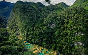 Картинка лес, скалы, каскад, Гватемала, Национальный парк, Semuc Champey