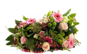 Обои цветы, букет, белый фон