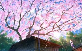 Картинка крыша, дом, дерево, весна, сакура, мостик