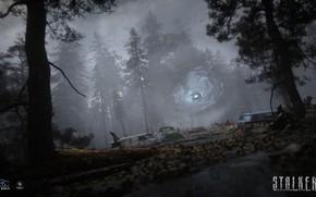 Картинка свалка, Сталкер, зона, S.T.A.L.K.E.R, Stalker 2, черный лес