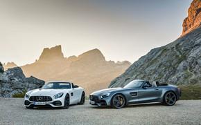 Картинка Roadster, Mercedes-Benz, пара, AMG, AMG GT