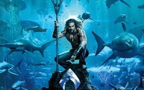 Картинка море, синева, фантастика, камень, дно, логотип, кораллы, трезубец, татуировка, акулы, постер, под водой, комикс, DC …