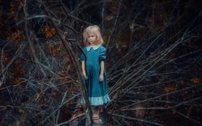 Картинка лес, ветки, платье, девочка, голубоглазая