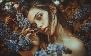 Картинка взгляд, девушка, цветы, настроение, портрет, весна, сад, плечи, сирень