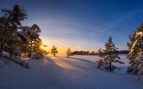 Картинка холод, зима, утро