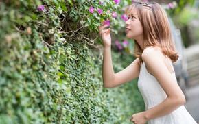 Картинка цветы, кустарник, девушка, платье, азиатка