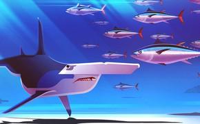 Картинка Рыбы, Минимализм, Рыба, Стиль, Акула, Fish, Shark, Животные, Арт, Art, Style, Digital, Illustration, Minimalism, illustration, …