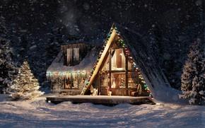 Картинка свет, снег, огни, дом, ели