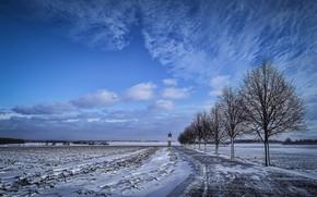 Картинка зима, дорога, поле, природа