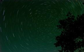 Картинка green, nature, night, pattern, stars, tree, volume, branch, circle, starry sky, symmetry, star gazing