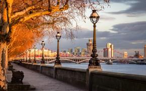 Картинка осень, деревья, мост, река, Англия, Лондон, фонари, набережная, London, England, River Thames, Chelsea Bridge, Мост …