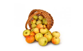 Картинка яблоки, урожай, корзинка