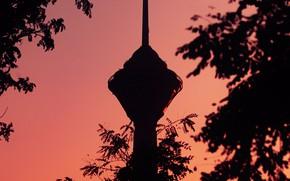 Картинка небо, ветки, розовый, здание, башня, сумерки