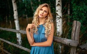 Картинка цветок, взгляд, деревья, поза, модель, забор, портрет, макияж, платье, прическа, блондинка, красотка, стоит, берёзы, на …