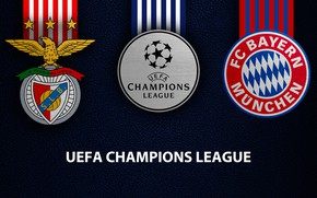 Картинка wallpaper, sport, logo, football, UEFA Champions League, Bayern Munich, SL Benfica, SL Benfica vs Bayern …
